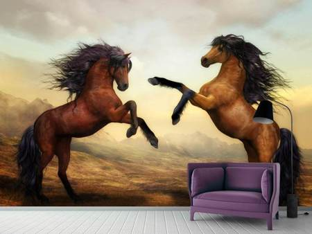 Photo Wallpaper Two wild horses