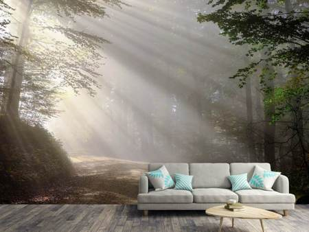 Photo Wallpaper Mystical light in the forest