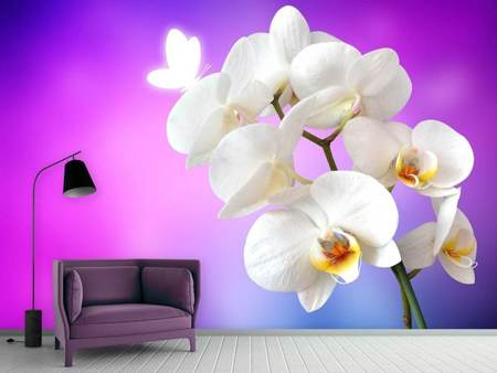 Photo Wallpaper Flower Power Orchid