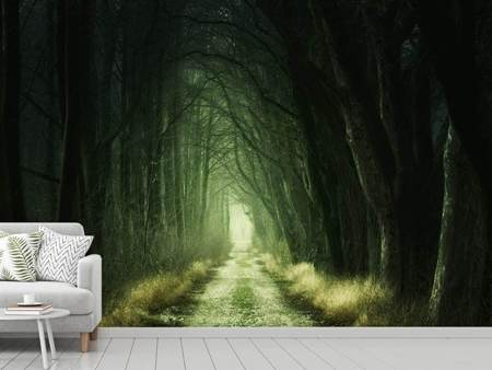 Photo Wallpaper Mysterious forest 2