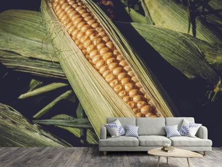 Fotobehang Fresh sweetcorn
