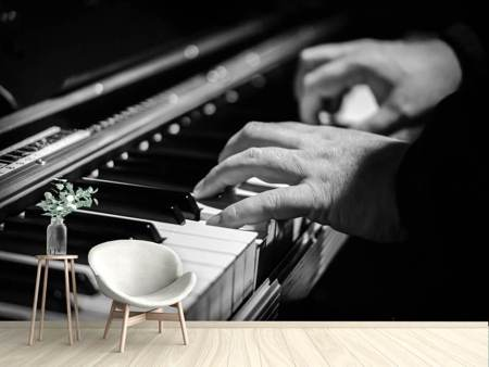 Photo Wallpaper The piano player