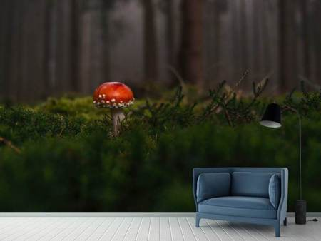 Photo Wallpaper A mushroom in the forest