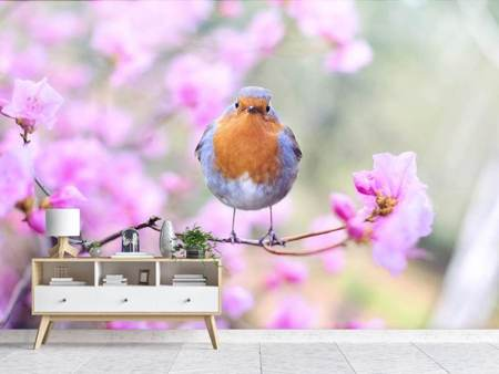 Photo Wallpaper Spring bird