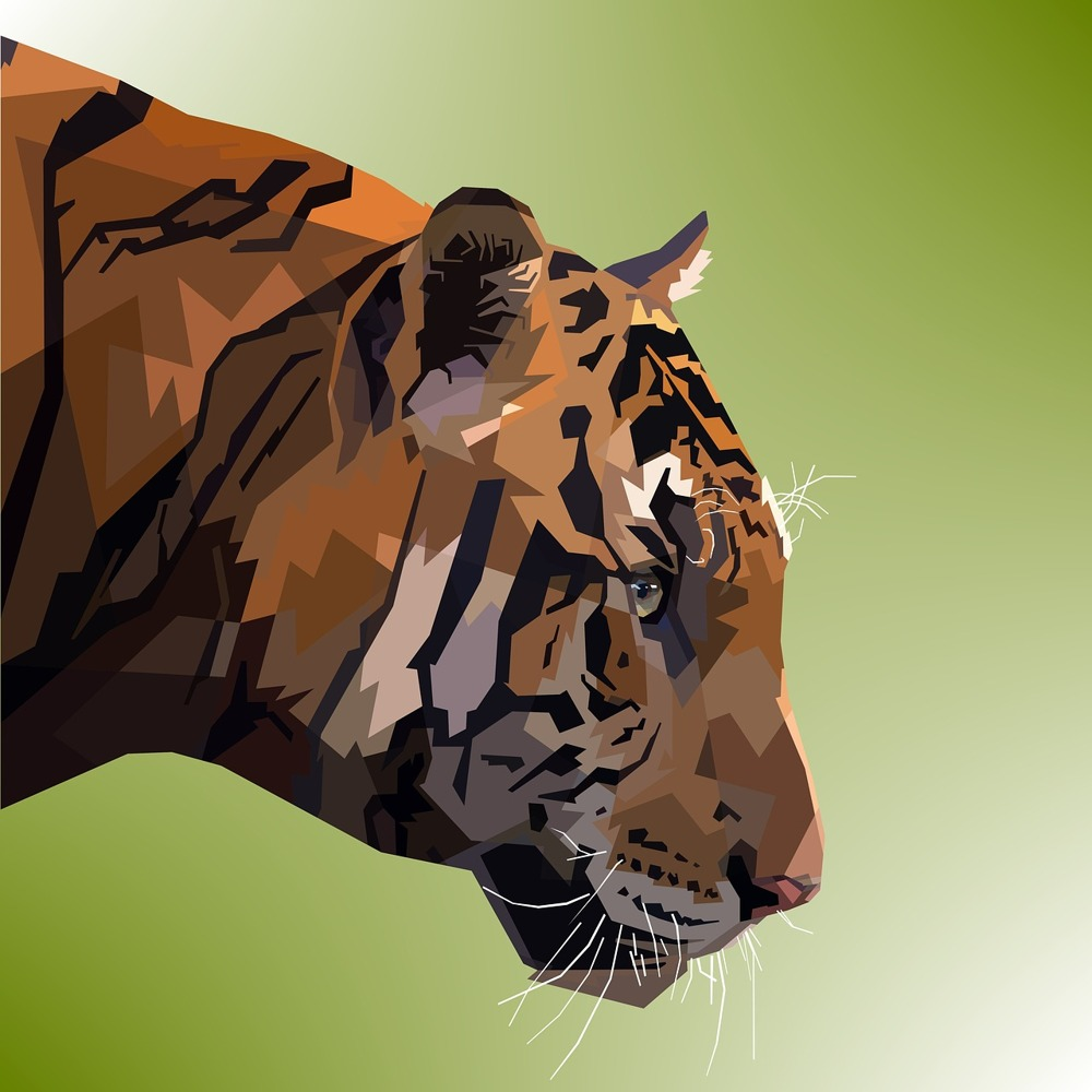 Fototapete Pop Art Tiger