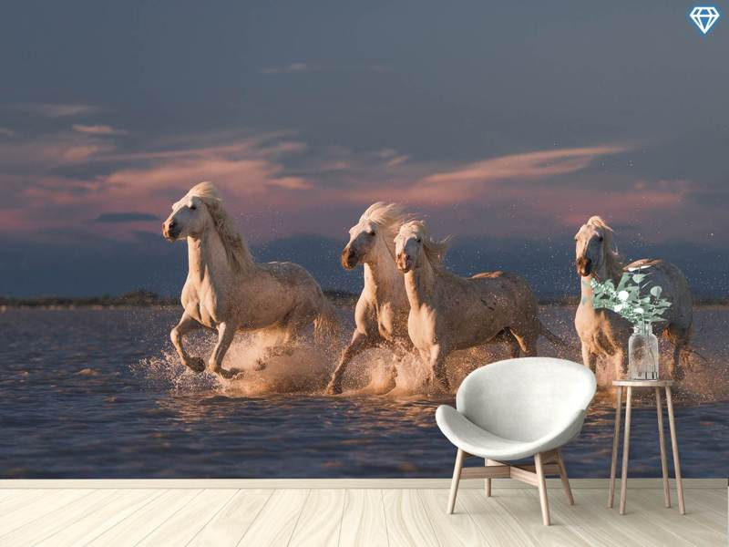 Photo Wallpaper Angels Of Camargue