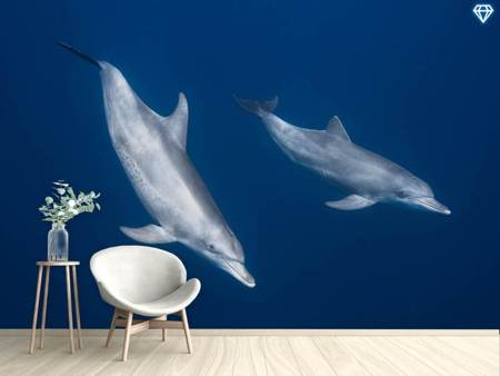 Photo Wallpaper Bottlenose Dolphins