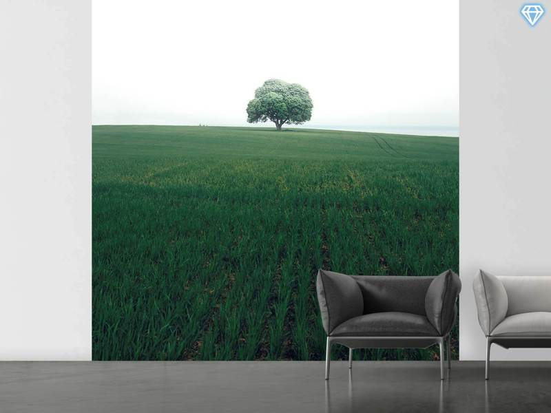 Fotobehang The Lonely Oak Tree