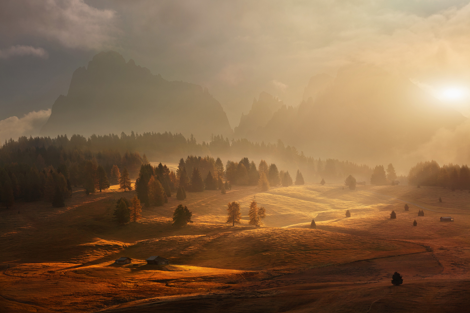 Fototapet Morning On Alpine Meadow
