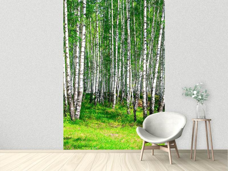 Fotobehang The Birch Forest In Summer
