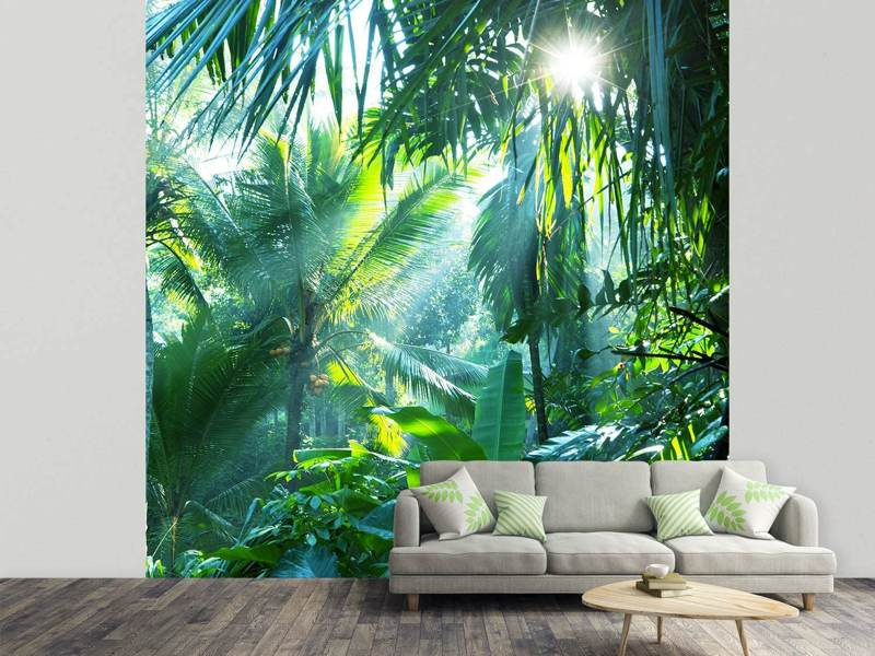 Photo Wallpaper In Tropical Forest