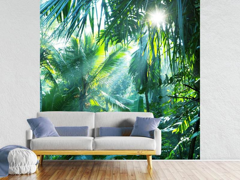 Fotobehang In Tropical Forest