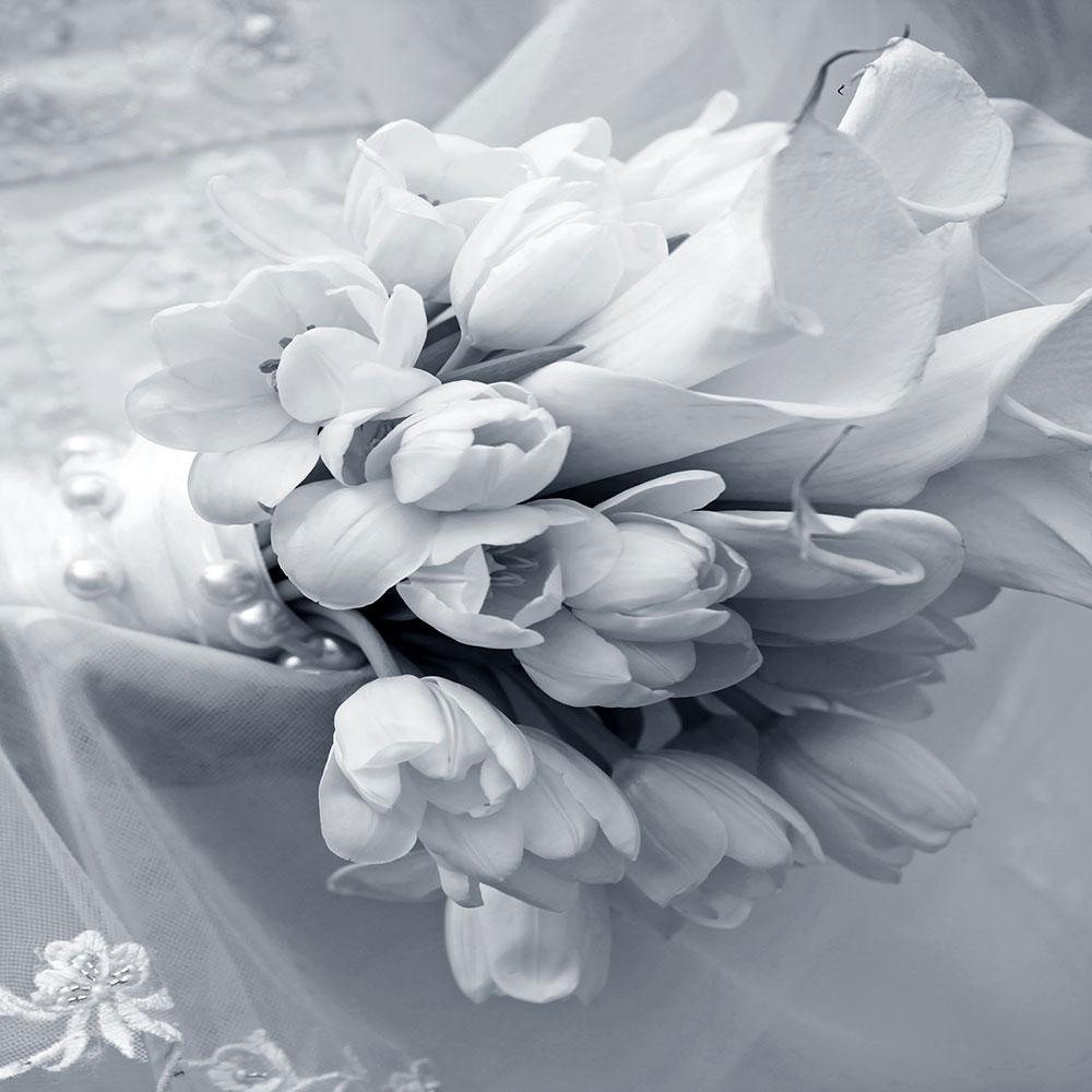 Fototapete Romantisches Tulpenbukett