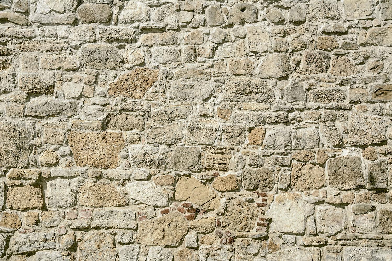 Fototapete Naturmauer
