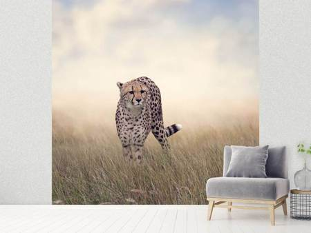 Fotobehang The Cheetah
