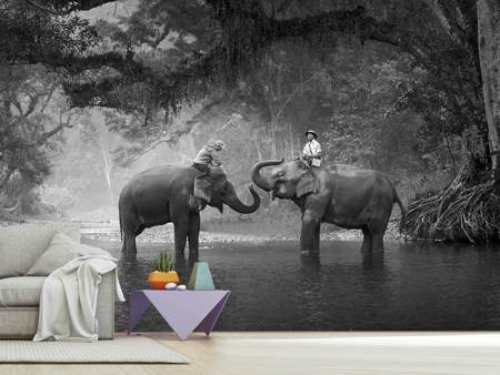 Photo Wallpaper Two Elephants